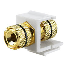 Construct Pro™ Gold-Plated Speaker Binding Post Keystone Insert (White | Black Band) CON3029KW
