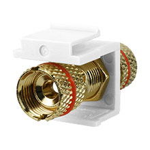 Construct Pro™ Gold-Plated Speaker Binding Post Keystone Insert (White | Red Band) CON3029RW